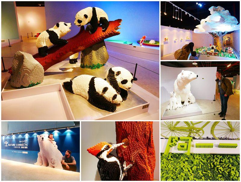 台北展覽 大動物奇積 樂高藝術展~樂高積木蓋的動物園,可愛好拍寓教於樂