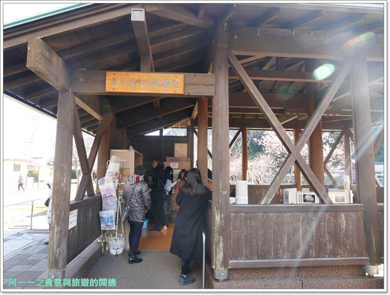 河津櫻.靜岡伊豆.日本自助旅遊.交通.攻略image039