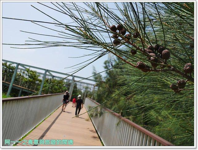 苗栗旅遊.竹南濱海森林公園.竹南海口人工濕地.長青之森.鐵馬道image013