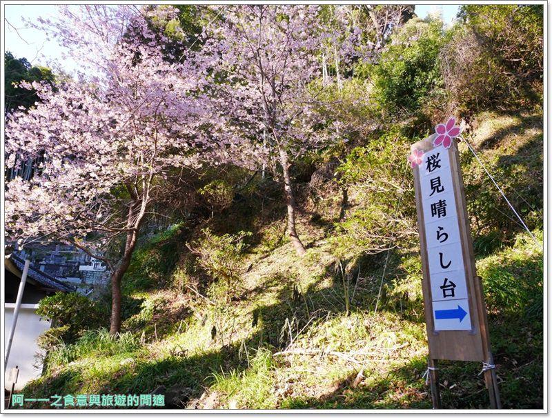 河津櫻.靜岡伊豆.日本自助旅遊.交通.攻略image071