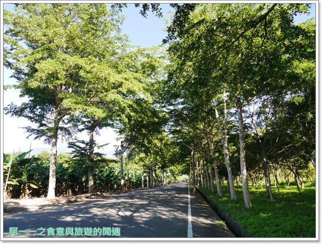 鹿野森活民宿.台東熱氣球.住宿.早餐.鸞山.貓咪image007