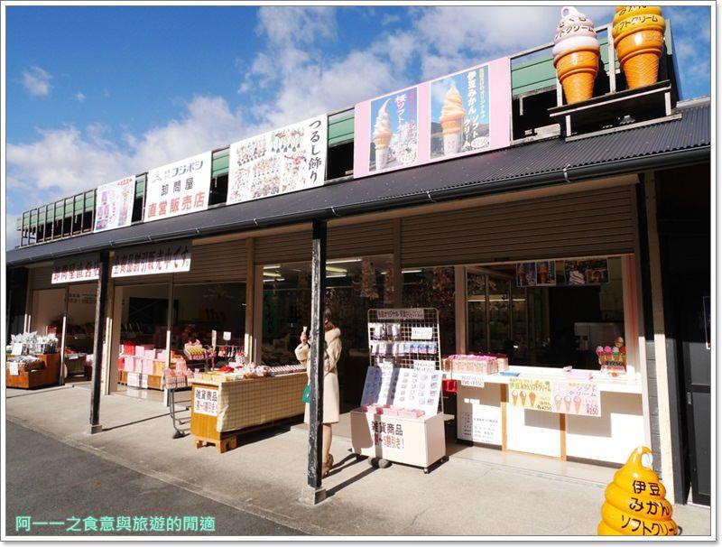 河津櫻.靜岡伊豆.日本自助旅遊.交通.攻略image035