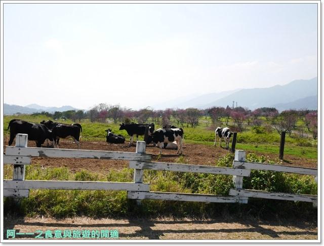 台東美食景點初鹿牧場初鹿鮮乳鮮奶櫻花祭放山雞伴手禮image018