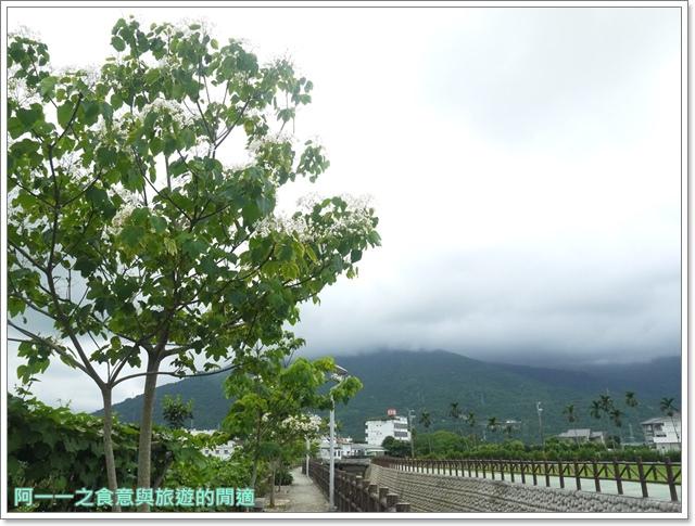 花蓮吉安中園桐花步道鬱金香花園image007