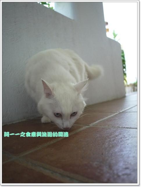 image139