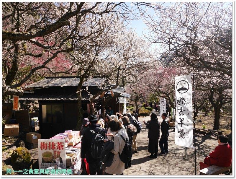靜岡旅遊.熱海梅園.來宮站.賞花.梅花image059