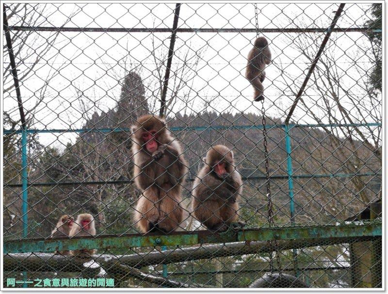 南阿蘇鐵道.阿蘇猿劇場.日本九州旅遊image015