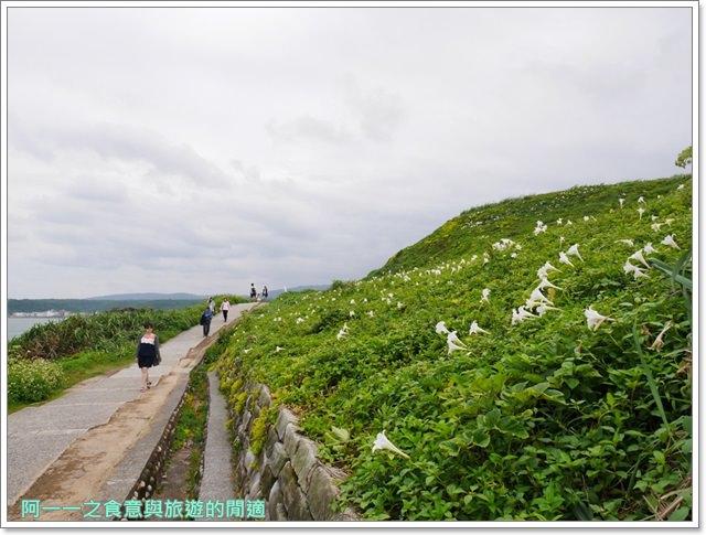 北海岸石門景點.富貴角燈塔.台灣百合.小旅行.踏青步道image025