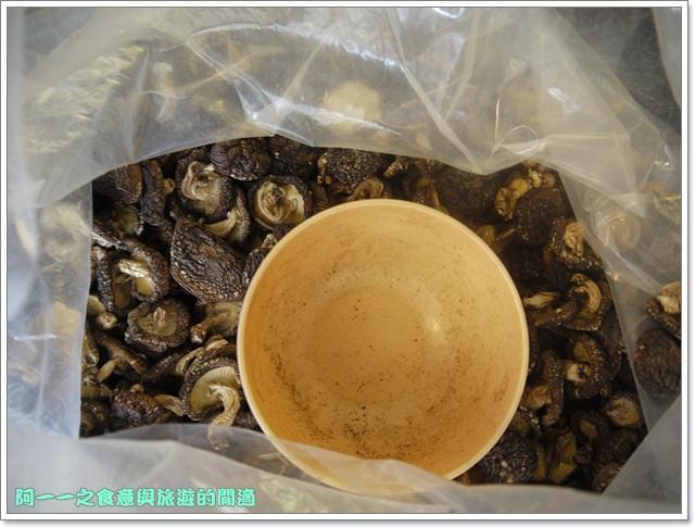 南投武界段木香菇一線天image035