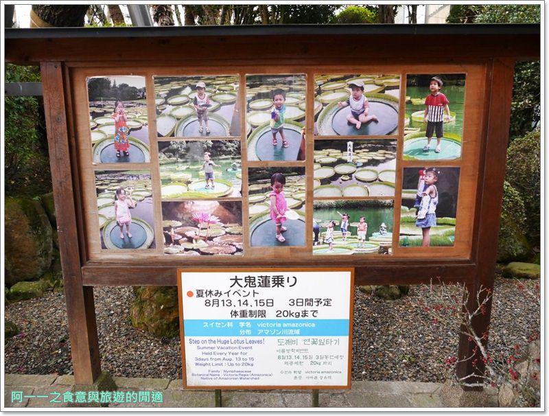 海地獄.九州別府地獄八湯.九州大分旅遊image016