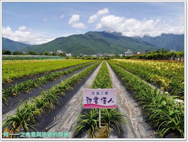 花蓮金針花.吉安.嘉德萱草花田.賞花.花蓮旅遊image011