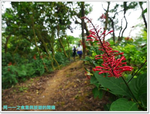 樹林大同山青龍嶺大棟山新北市登山旅遊節劉克襄image059