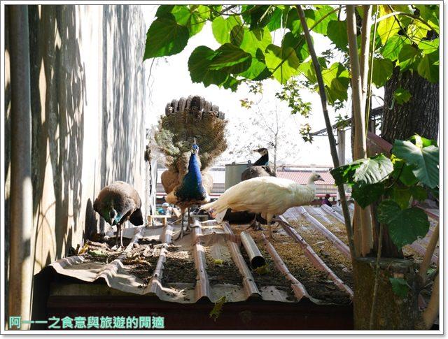 台東美食景點初鹿牧場初鹿鮮乳鮮奶櫻花祭放山雞伴手禮image048