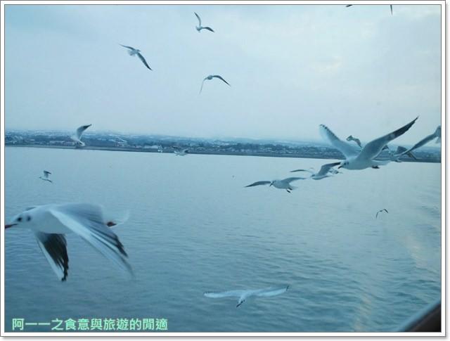 九州熊本美食.龍の家拉麵.熊本渡輪.海鷗image015