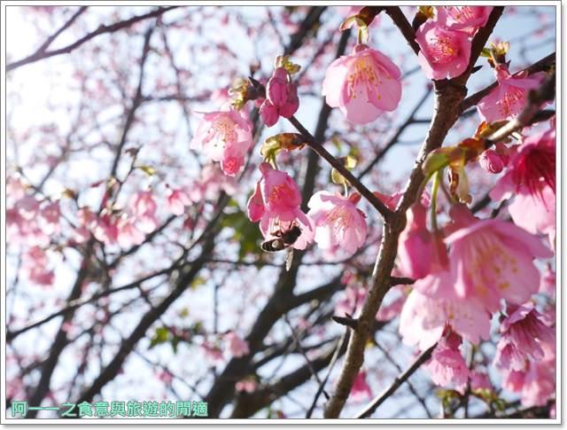 台東美食景點初鹿牧場初鹿鮮乳鮮奶櫻花祭放山雞伴手禮image032