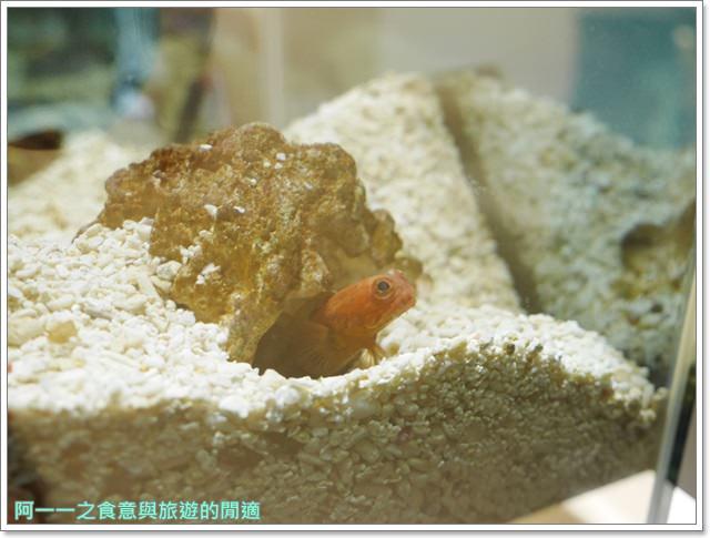 大阪旅遊.expocity.nifrel.海遊館.親子.動物園image017