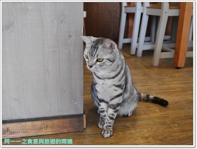 高雄貓餐廳.捷運中央公園站美食.描屋.早午餐.下午茶image026