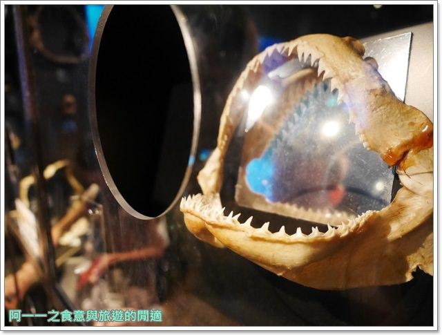 沖繩美麗海水族館.海洋博紀念公園.海豚秀.親子旅遊image048