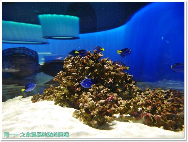 大阪旅遊.expocity.nifrel.海遊館.親子.動物園image010