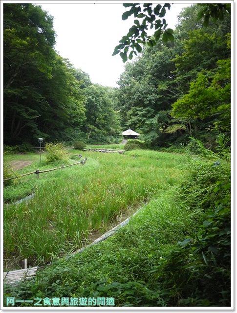 明治神宮原宿澀谷忠犬八公小八御苑日本東京自助旅遊image057