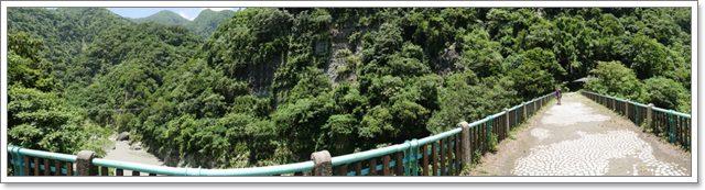 台東旅遊.泰源幽谷.登仙橋.台灣獼猴.東河橋.東部海岸image020