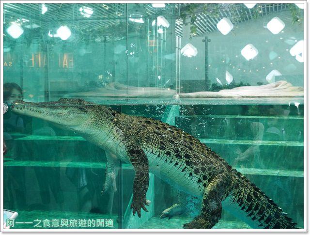 大阪旅遊.expocity.nifrel.海遊館.親子.動物園image035