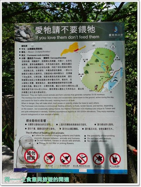 台東旅遊.泰源幽谷.登仙橋.台灣獼猴.東河橋.東部海岸image015