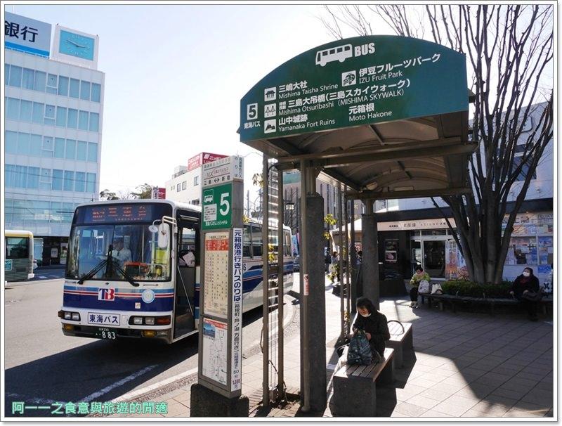 三島SkyWalk.步行吊橋.富士山.靜岡景點image006