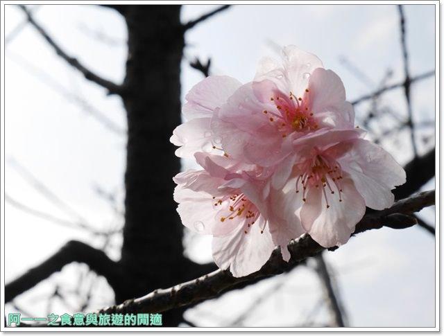 捷運中正紀念堂景點櫻花海綿寶寶暢遊比奇堡特展image072