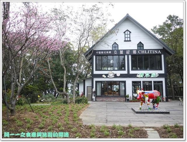 image011初鹿牧場櫻花