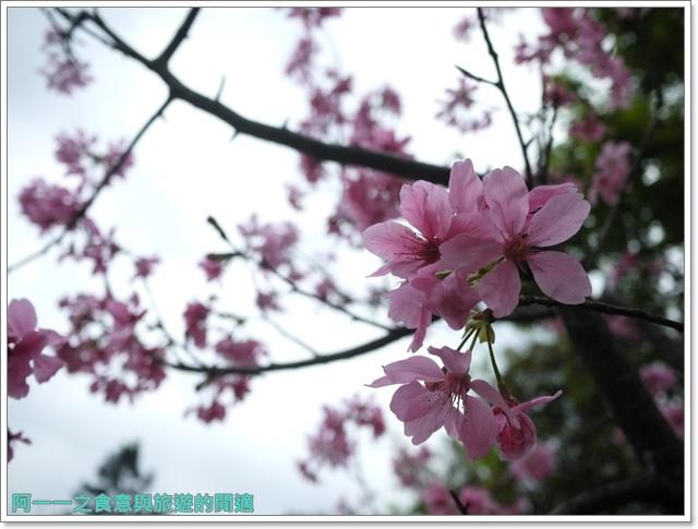 大溪老街武德殿蔣公行館中正公園image027