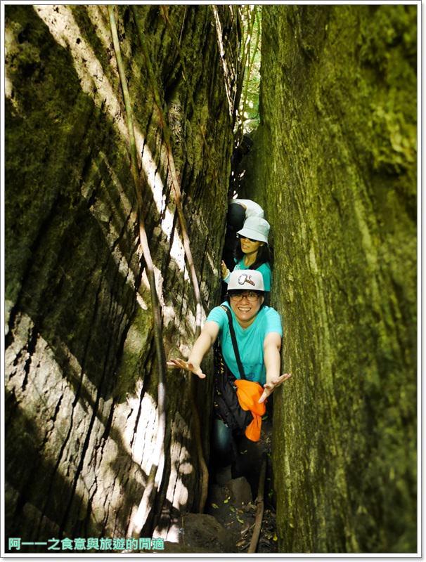鸞山森林博物館.台東景點.祕境.會走路的樹.阿凡達image039