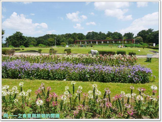 大阪親子景點.日本民家集落博物館.服步綠地.古蹟.老屋image015