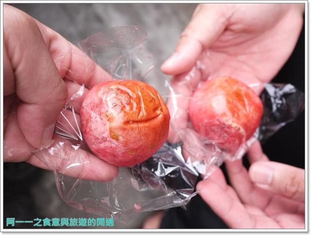 苗栗三義旅遊美食小吃伴手禮金榜麵館凱莉西點紫酥梅餅image026