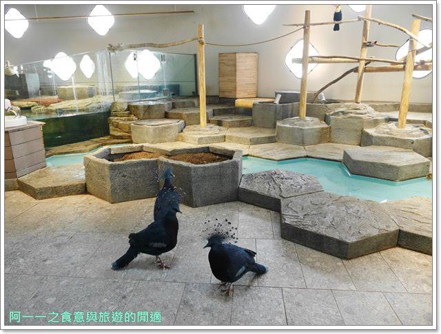大阪旅遊.expocity.nifrel.海遊館.親子.動物園image053