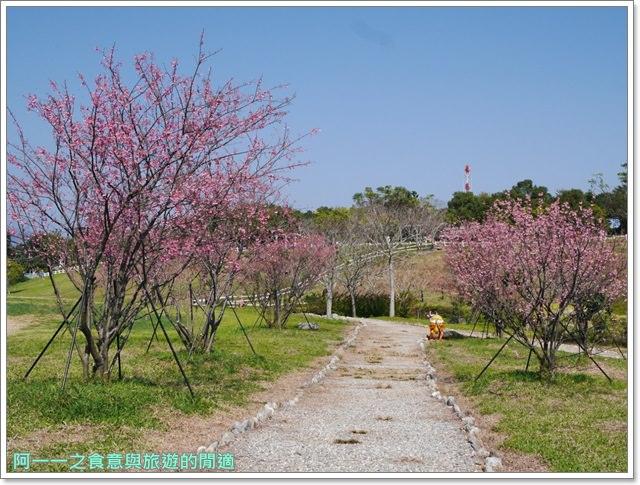 台東美食景點初鹿牧場初鹿鮮乳鮮奶櫻花祭放山雞伴手禮image021