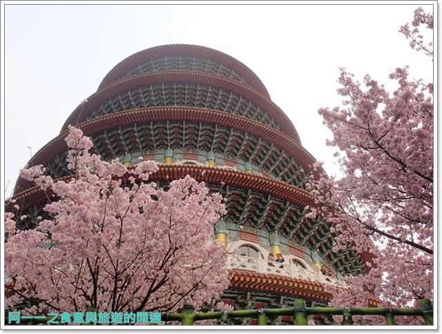 淡水天元宮吉野櫻花交通公車拍攝攻略懶人包image018