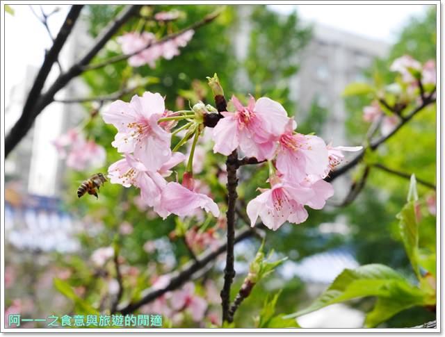 捷運中正紀念堂景點櫻花海綿寶寶暢遊比奇堡特展image069