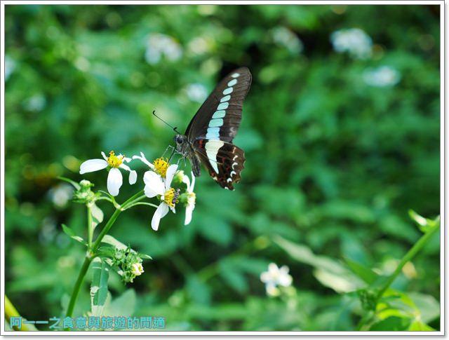 天溪園生態教育中心.陽明山國家公園.親子旅遊.台北好去處image046