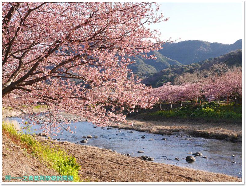 河津櫻.靜岡伊豆.日本自助旅遊.交通.攻略image061