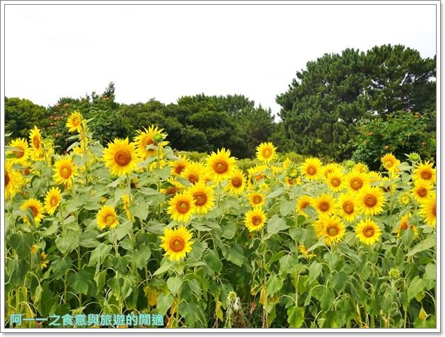 大阪親子景點.日本民家集落博物館.服步綠地.古蹟.老屋image021