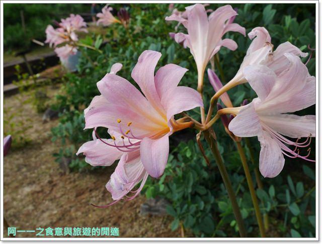 姬路城好古園活水軒鰻魚飯日式庭園紅葉image052