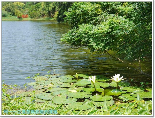 苗栗旅遊.竹南濱海森林公園.竹南海口人工濕地.長青之森.鐵馬道image008
