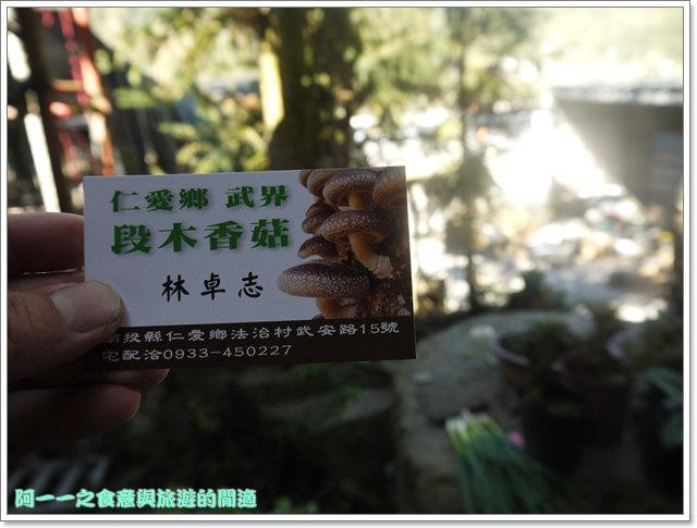 南投武界段木香菇一線天image043