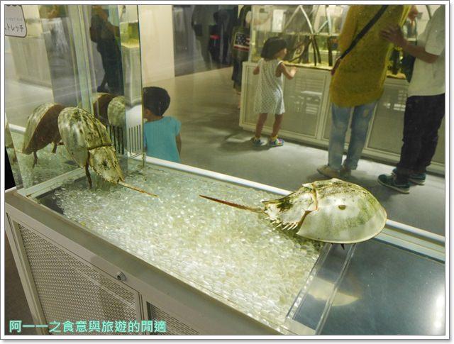 大阪旅遊.expocity.nifrel.海遊館.親子.動物園image018