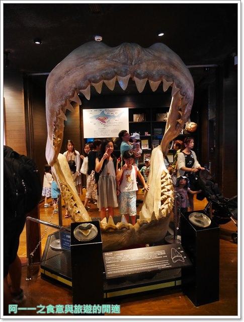 沖繩美麗海水族館.海洋博紀念公園.海豚秀.親子旅遊image049