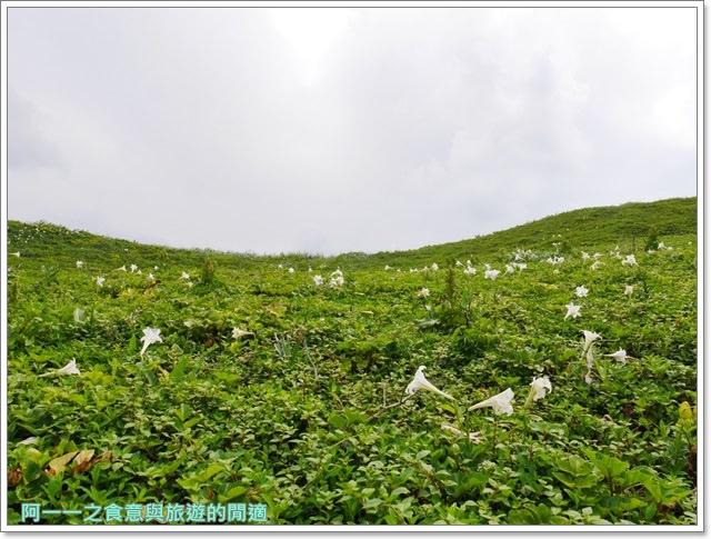 北海岸石門景點.富貴角燈塔.台灣百合.小旅行.踏青步道image026