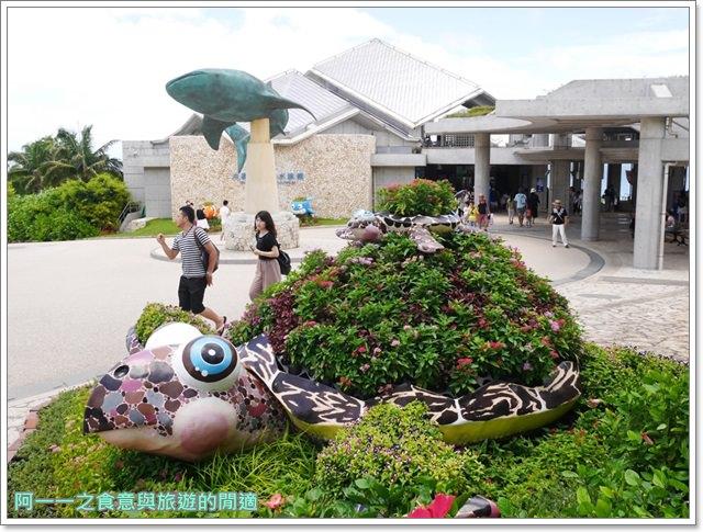 沖繩美麗海水族館.海洋博紀念公園.海豚秀.親子旅遊image017