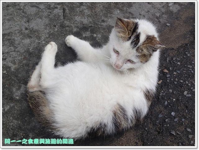 image001石門老梅石槽劉家肉粽三芝小豬