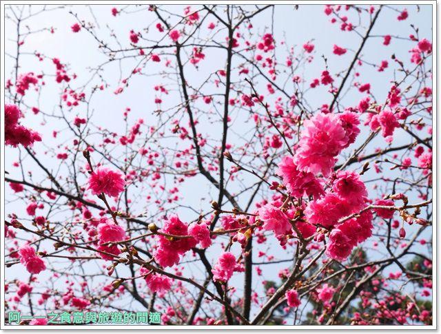 捷運中正紀念堂景點櫻花海綿寶寶暢遊比奇堡特展image065